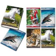 BLASETTI COPERTINA 4 ANELLI ANIMALI CONF.6 RACCOGLITORI A4 PIU