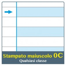 ONE COLOR QUADERNO DIDATTICO MAXI C 100GR CONF.6